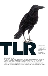 "Cover of TLR's ""Emo, Meet Hole"" issue"