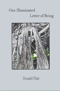 Cover of Donald Platt's poetry book One Illuminated Letter of being.