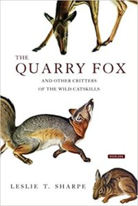 Cover of The Quarry Fox and other Critters of the Wild Catskills by Leslie T. Sharpe