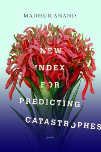 Cover of A New Index For Predicting Catastrophes by Madhur Anand