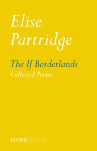 Cover of The If Borderlands by Elise Partridge