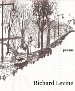 Cover of Contiguous States by Richard Levine