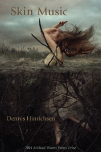 Cover of Skin Music by Dennis Hinrichsen