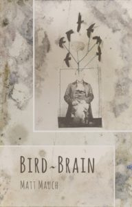 Cover of Bird~Brain by Matt Mauch