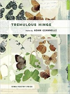 Cover of Tremulous Hinge by Adam Giannelli