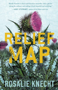 Cover of Relief Map by Rosalie Knecht