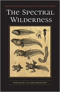 Cover of The Spectral Wilderness by Oliver Bendorf