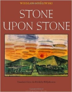 Cover of Stone Upon Stone by Wiesław Myśliwski